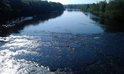 River Ribble from the park bridge